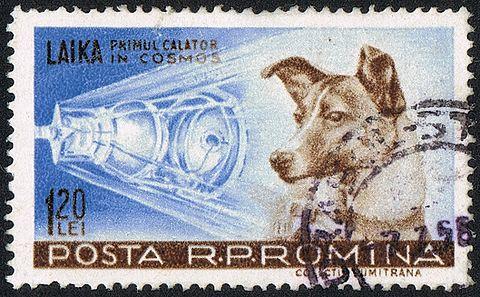 ライカが描かれたロシアの郵便切手 / wikipedia