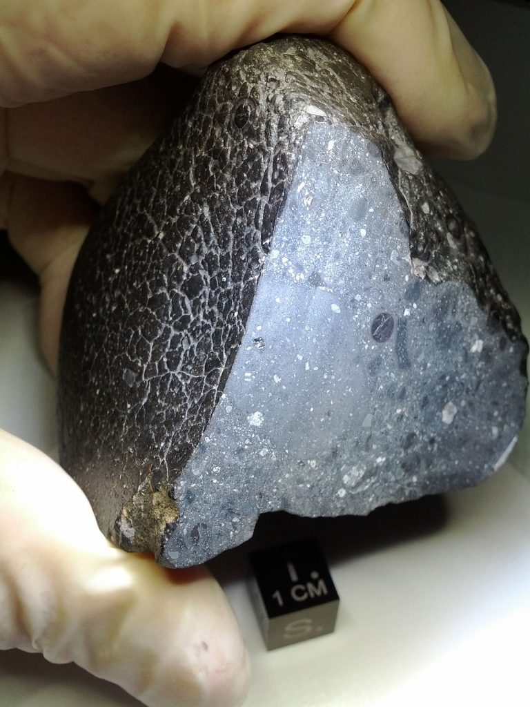 火星隕石 wikipedia 引用