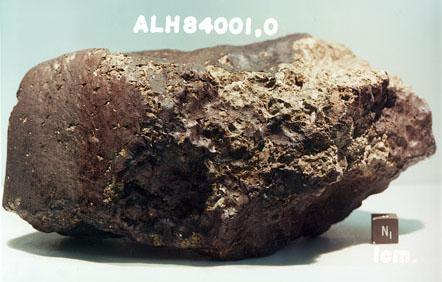 ALH84001 火星隕石 wikipedia 引用