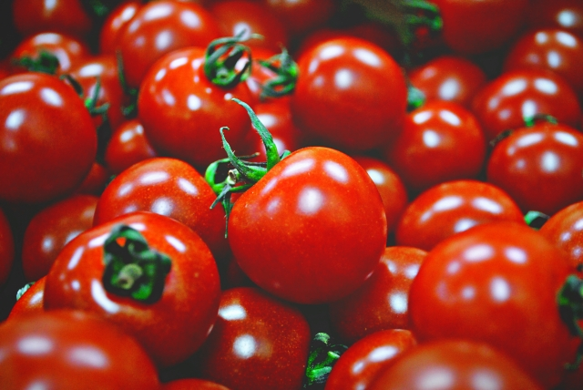 トマト f