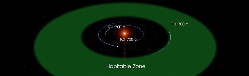 TOI-700の惑星の軌道とハビタブルゾーンの位置を示した画像 / wikipedia